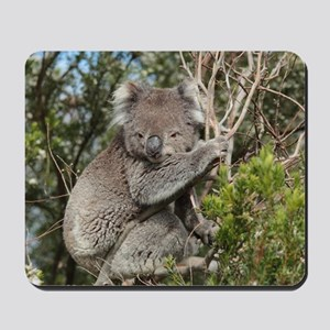 koala12 Mousepad