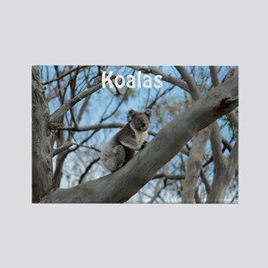 Koala Cover Rectangle Magnet
