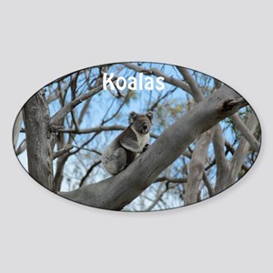 Koala Cover Sticker (Oval)