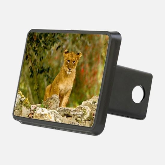 Lion Cub Hitch Cover