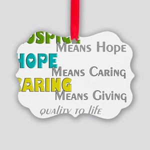 Hospice 2013 hope green blue Picture Ornament