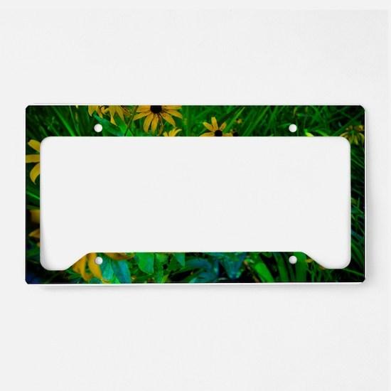 Black-Eyed Susans License Plate Holder