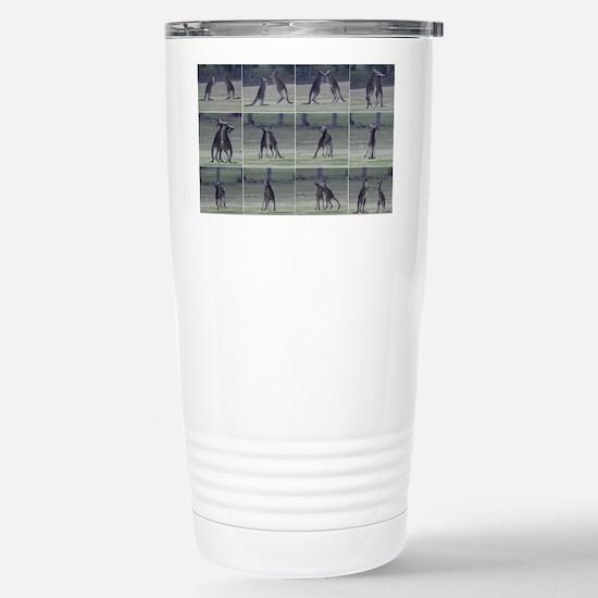 kangaroo8 Stainless Steel Travel Mug