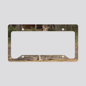 kangaroo9 License Plate Holder