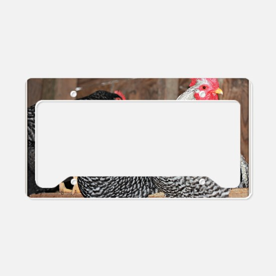 chickens on a roost License Plate Holder