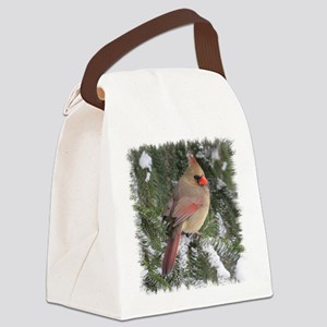 FemCd10x10 Canvas Lunch Bag