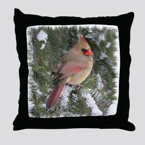 FemCd10x10 Throw Pillow