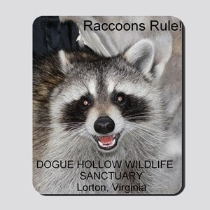 Peanut Raccoon Mousepad