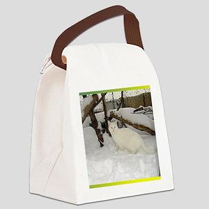 Klea Canvas Lunch Bag