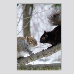 BS6.61x9.86 Postcards (Package of 8)