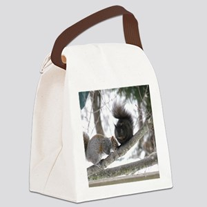 BS96x96 Canvas Lunch Bag