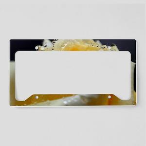 IMG_0123 License Plate Holder