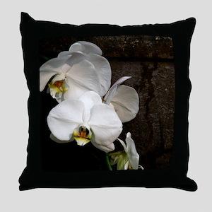 IMG_3141 Throw Pillow