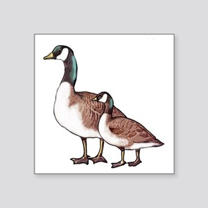 """Canada Geese Square Sticker 3"""" x 3"""""""