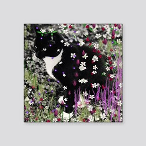 "Freckles the Tux Kitten in  Square Sticker 3"" x 3"""
