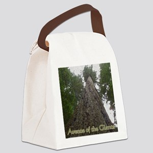 Founders Tree Tall - Avenue of th Canvas Lunch Bag