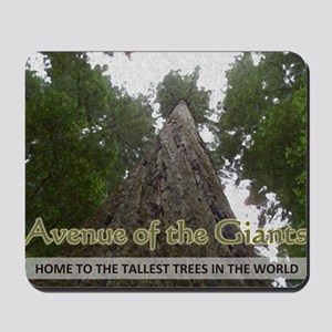 Founder's Tree Wide -  Avenue of the Gia Mousepad