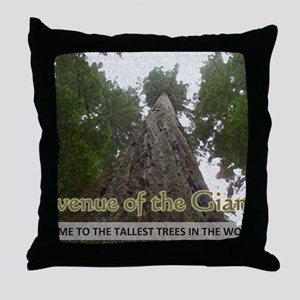 Founder's Tree Wide -  Avenue of the  Throw Pillow
