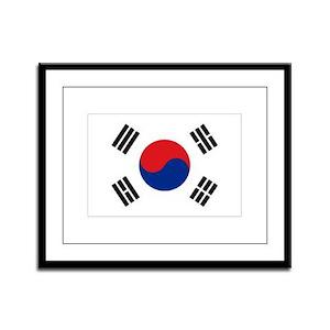 South Korean flag Framed Panel Print