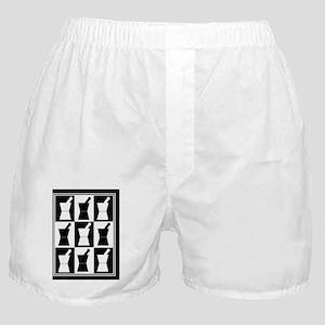 pharmacist blanket popart bw Boxer Shorts