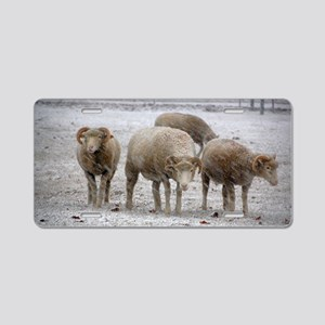Four Ewes in Snowshower Aluminum License Plate