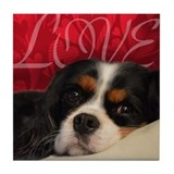 King charles spaniel Tile Coasters