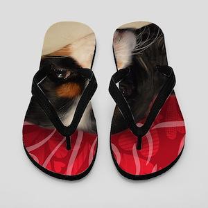 Cavalier King charles Spaniel Love Flip Flops
