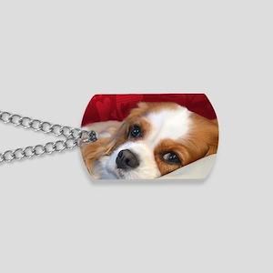 Blenheim Cavalier King Charles Spaniel Dog Tags