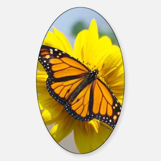 Monarch butterfly Sticker (Oval)