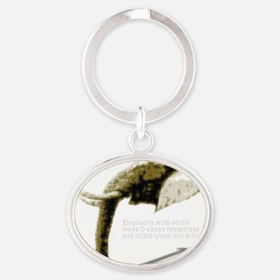 aspha_d-shape Oval Keychain