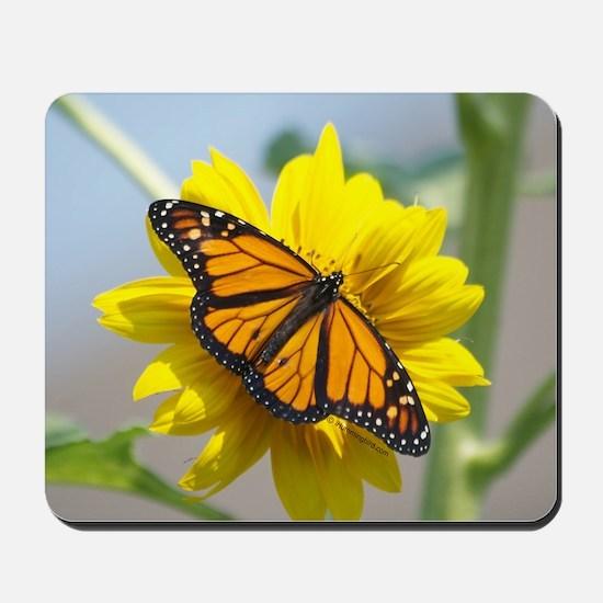 Monarch Butterfly Mousepad