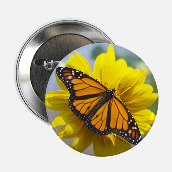 "Monarch Butterfly 2.25"" Button"