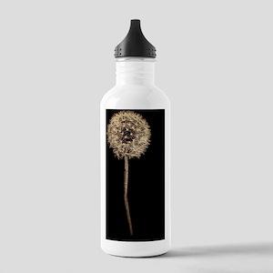 Designer Dandelion Stainless Water Bottle 1.0L