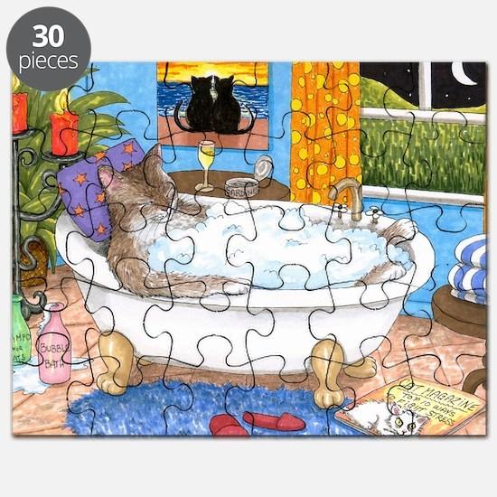 cat 567 Puzzle
