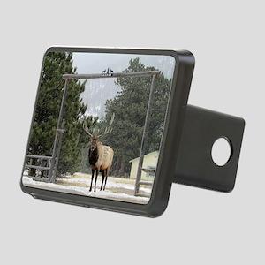 Elk in Estes Park Colorado Rectangular Hitch Cover