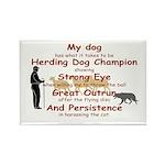 Herding Eye Rectangle Magnet (100 pack)