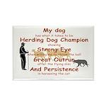 Herding Eye Rectangle Magnet (10 pack)