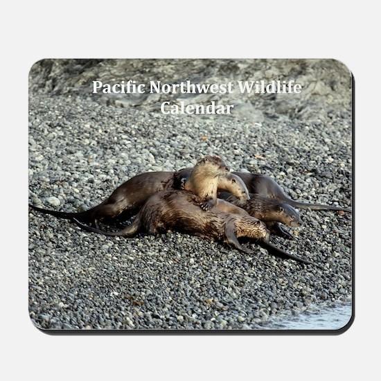 River Otters Mousepad