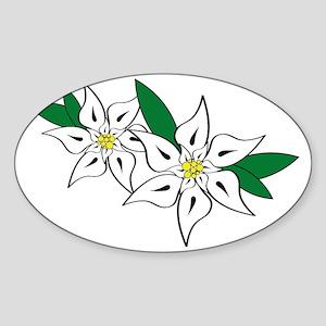 Edelweiss Sticker (Oval)