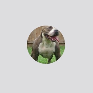 Pittbull Mini Button