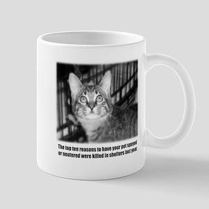 Top Ten Reasons Cat Mug