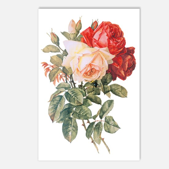Three Roses Postcards (Package of 8)