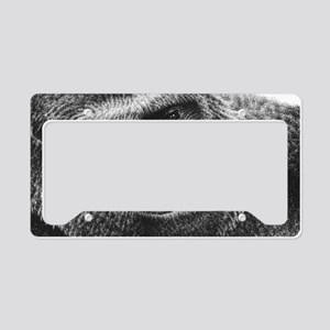 Gorilla Wall Decal License Plate Holder