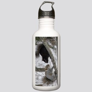 BS2.53x5.03 Stainless Water Bottle 1.0L