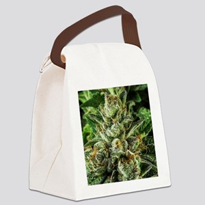 Master_IMG_1555 Canvas Lunch Bag