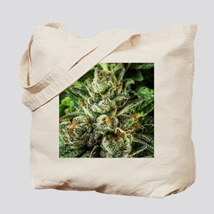 Master_IMG_1555 Tote Bag