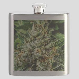 Master_IMG_1555 Flask