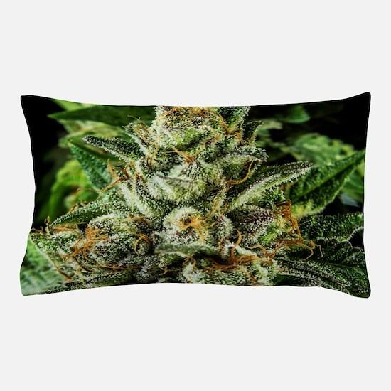 Master_IMG_1555 Pillow Case