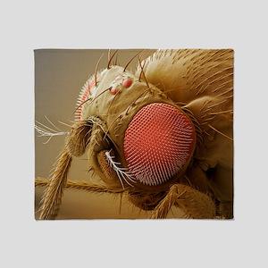 Fruit fly head, SEM Throw Blanket