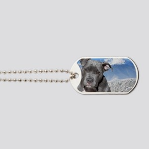 Blue American Pit Bull Terrier Puppy Dog Dog Tags